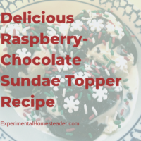 Delicious Raspberry-Chocolate Sundae Topper Recipe