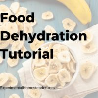 Food Dehydration Tutorial