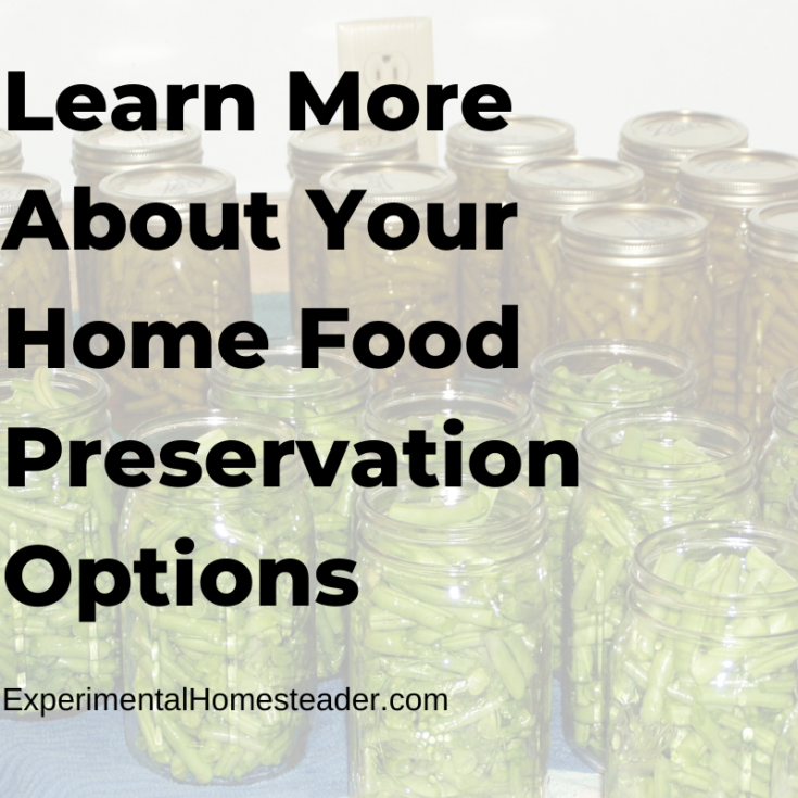 Learn More About Your Home Food Preservation Options