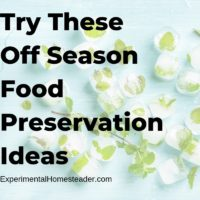 Try These Off Season Food Preservation Ideas