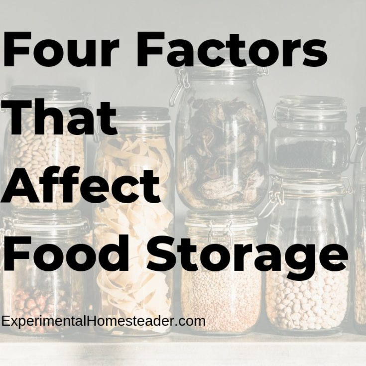 Four Factors That Affect Food Storage