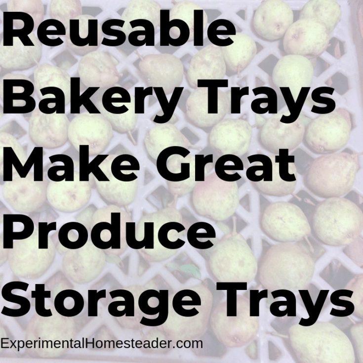 Reusable Bakery Trays Make Great Produce Storage Trays