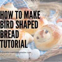 How To Make Bird Shaped Bread Tutorial
