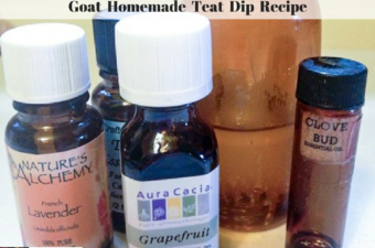 Essential oils and the finished homemade goat teat dip spray.