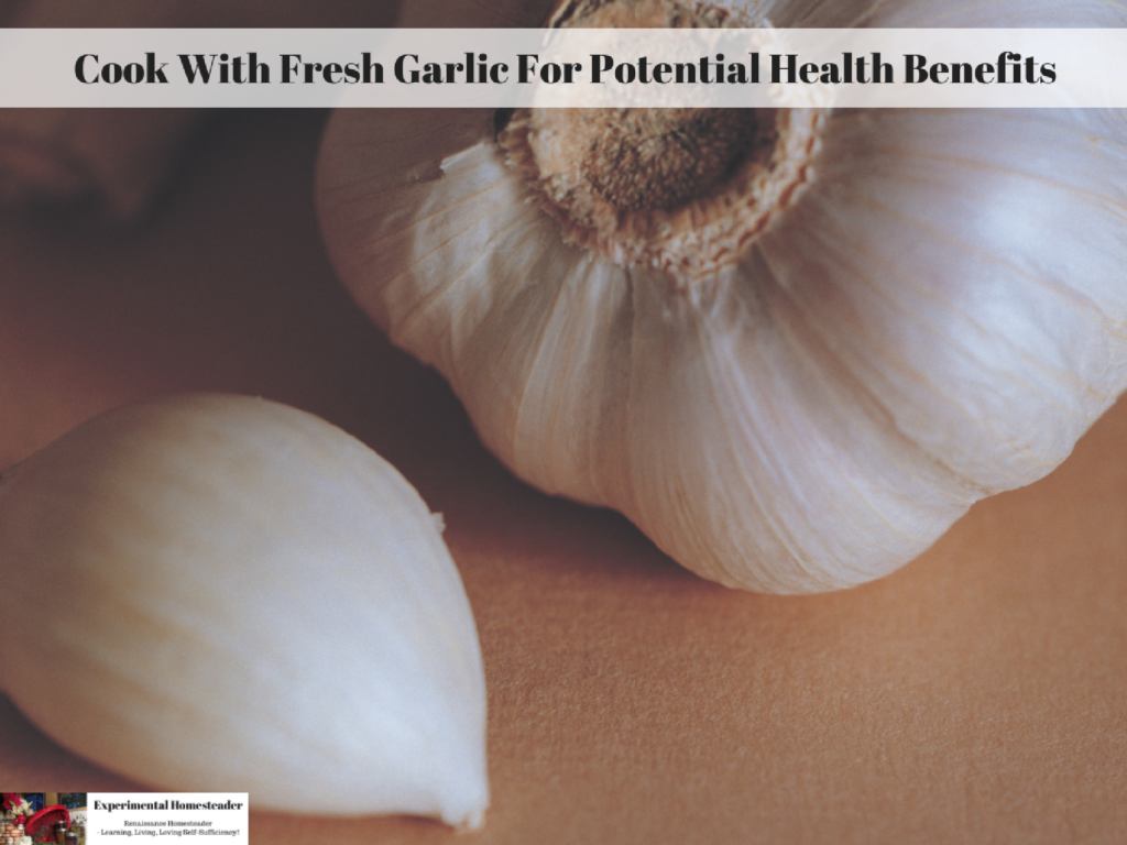 Garlic laying on a counter.