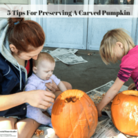 5 Tips For Preserving A Carved Pumpkin