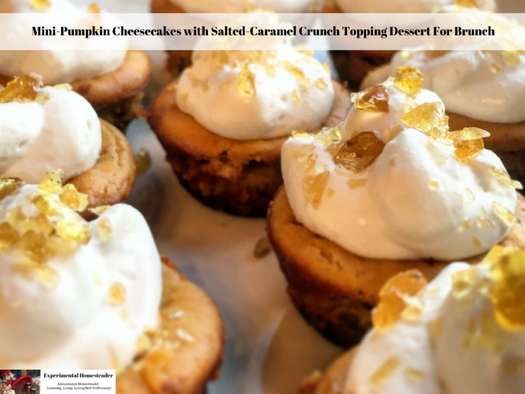 Mini-Pumpkin Cheesecakes with Salted-Caramel Crunch Topping Dessert For Brunch