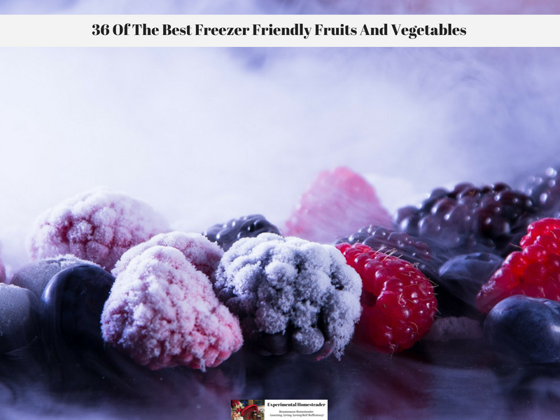 36 Of The Best Freezer Friendly Fruits And Vegetables