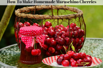 Fresh picked cherries in a basket and on a plate.