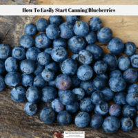 How To Easily Start Canning Blueberries