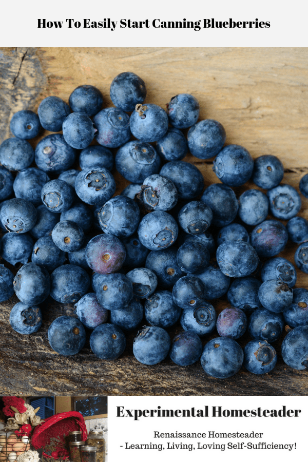 Fresh blueberries laying on a wooden board.