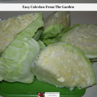 Easy Coleslaw From The Garden