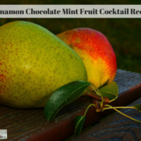 Cinnamon Chocolate Mint Fruit Cocktail Recipe