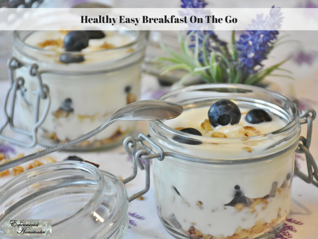 Healthy Easy Breakfast On The Go