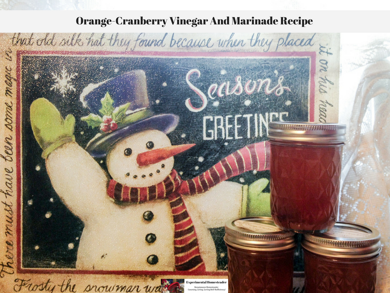 Orange-Cranberry Vinegar And Marinade Recipe