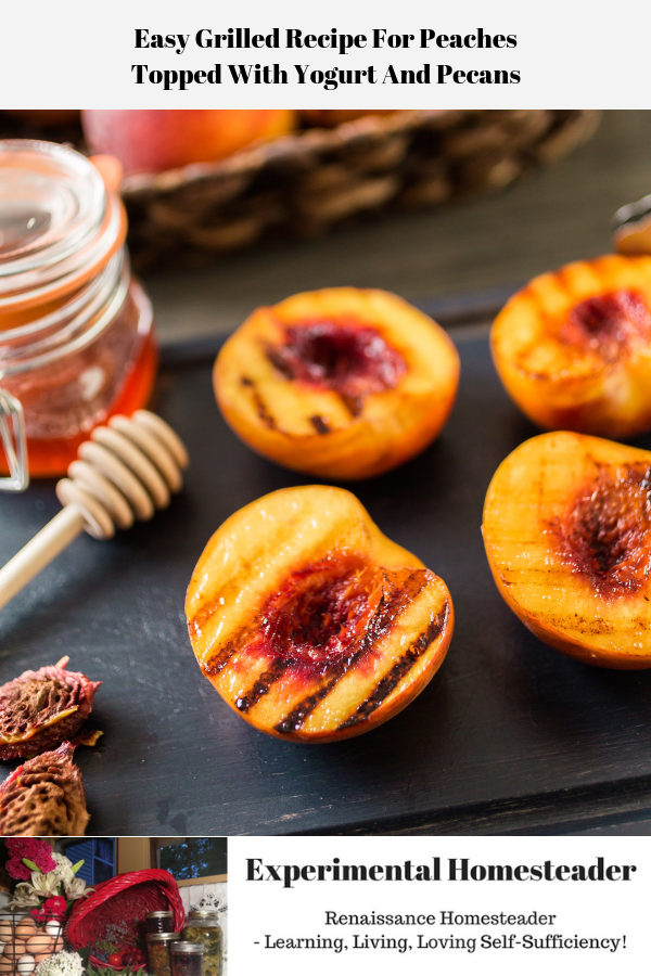 Grilled peaches sitting on a plate, whole peaches in the background. There is honey and peach pits off to one side.