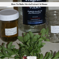 How To Make Stevia Extract At Home