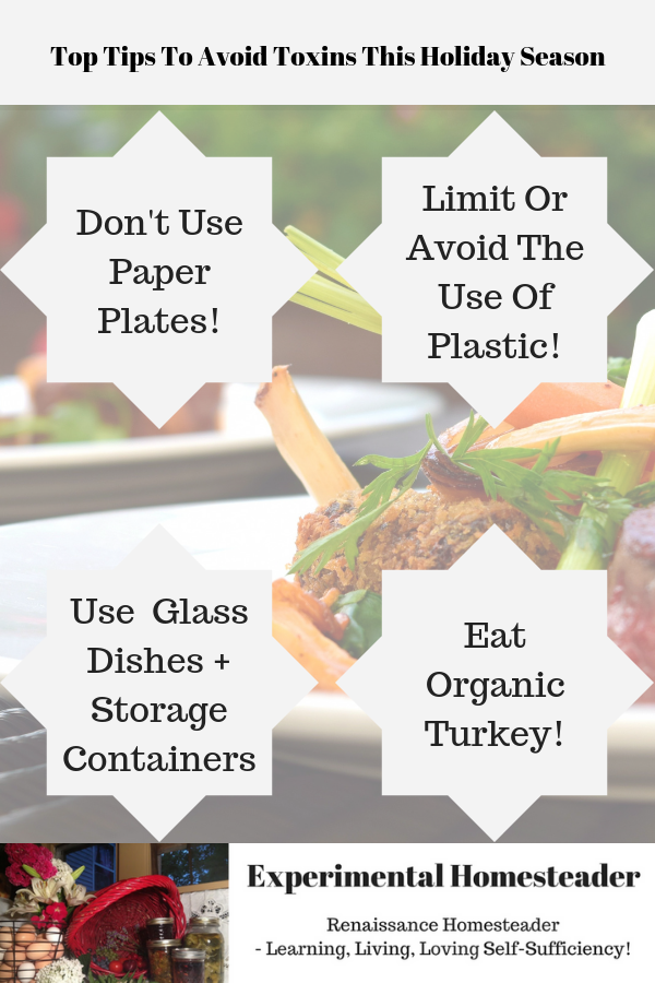 Food in the background with the four main tips to avoid toxins tis holiday season highlighted.