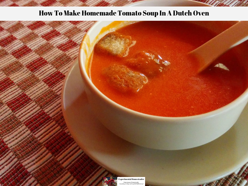 A bowl of freshly made tomato soup with croutons in a bowl on a table.