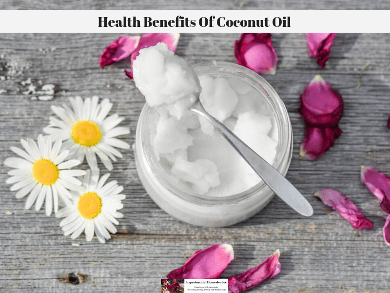 A jar of coconut oil with a spoonful laying on top of the jar. Daisies and rose petals are laying on the table around the edge of the jar of coconut oil.