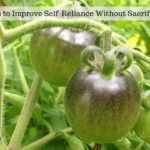 Practical Ways to Improve Self-Reliance Without Sacrificing Too Much