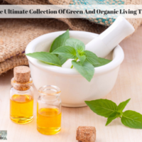 The Ultimate Collection Of Green And Organic Living Tips
