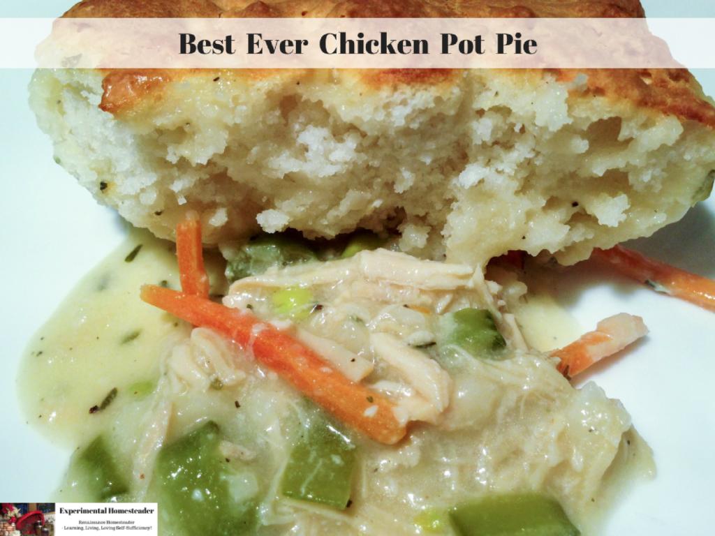 Best Ever Chicken Pot Pie