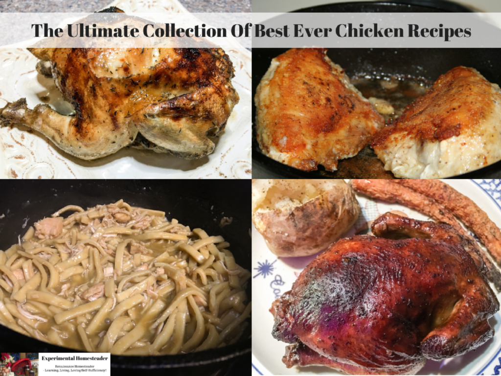 The Ultimate Collection Of Best Ever Chicken Recipes