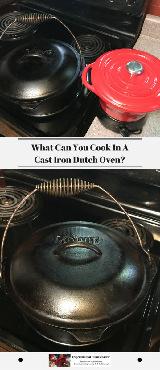 A Lodge 5 quart cast iron dutch oven and a cast iron crock pot sitting side by side on my stove.