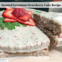 Scented Geranium Strawberry Cake Recipe