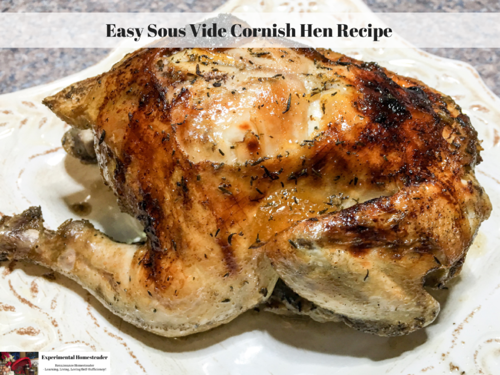 Easy Sous Vide Cornish Hen Recipe
