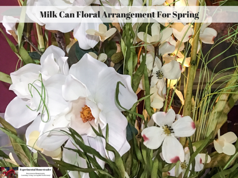 Milk can floral arrangement for spring experimental homesteader white magnolia and white dogwood silk flowers made into a floral arrangement mightylinksfo