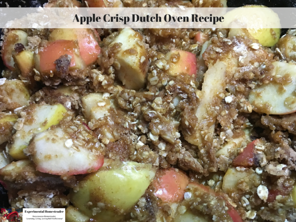 Apple Crisp in a cast iron dutch oven.