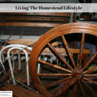 Living The Homestead Lifestyle