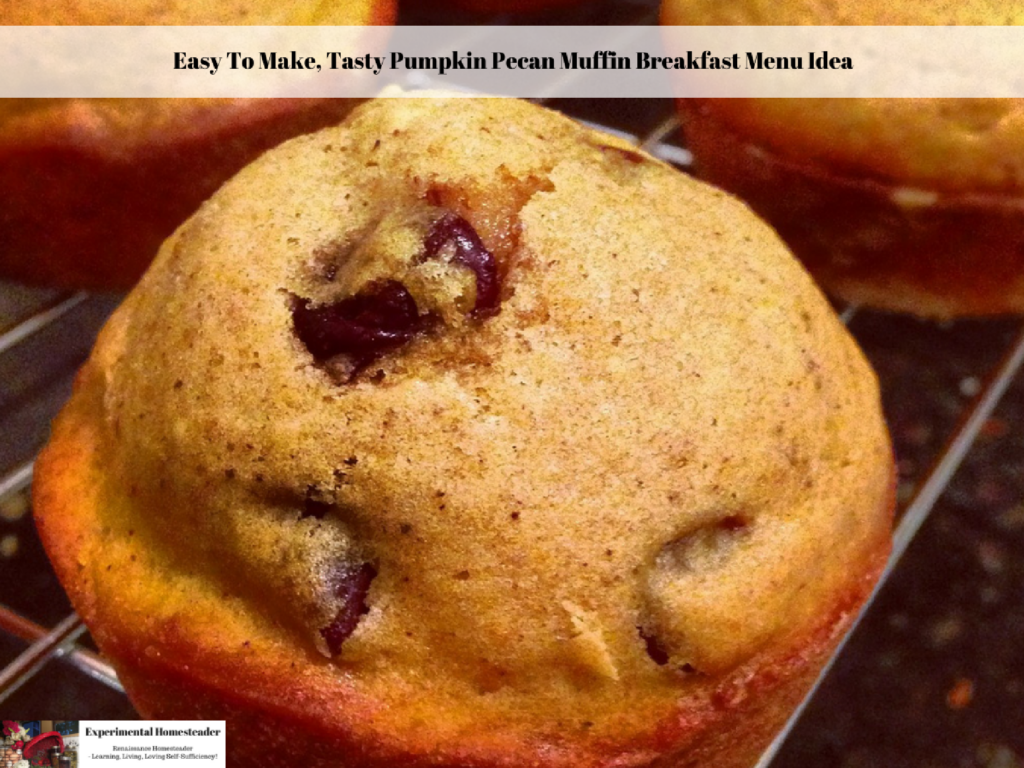 Easy To Make, Tasty Pumpkin Pecan Muffin Breakfast Menu Idea