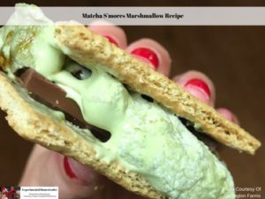 Matcha S'mores Marshmallow Recipe