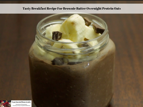 Tasty Breakfast Recipe For Brownie Batter Overnight Protein Oats