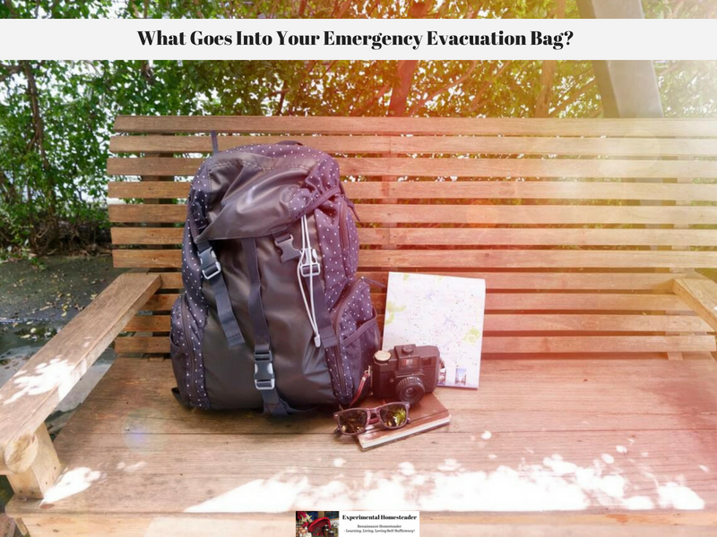 What Goes Into Your Emergency Evacuation Bag?