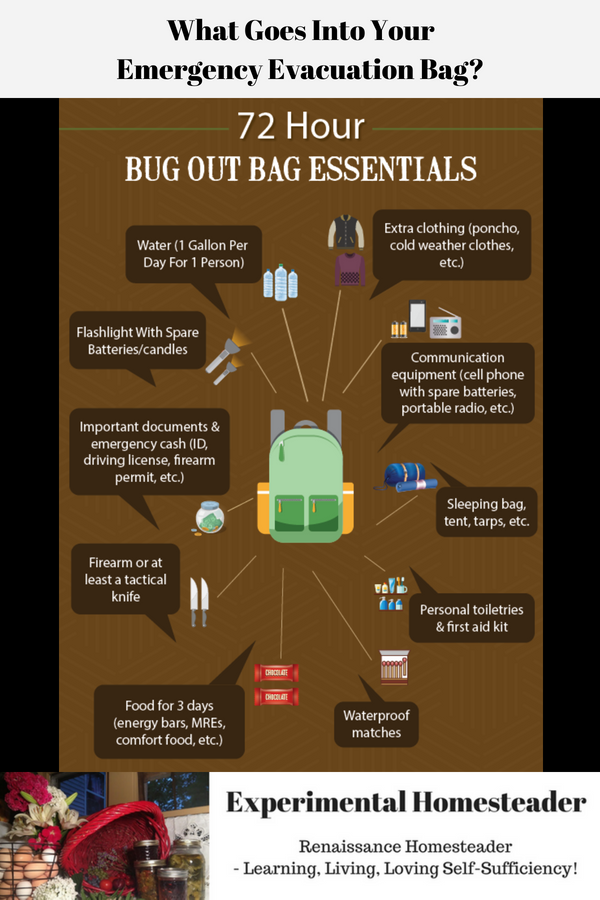 An infographic showing 72 hour bug out bag essentials that you need in your emergency evacuation bag.