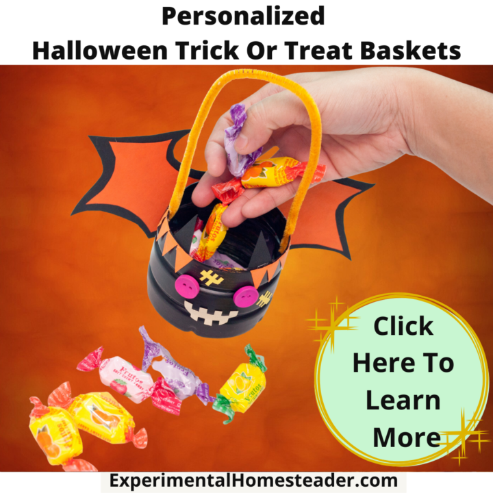Personalized Halloween Trick Or Treat Baskets
