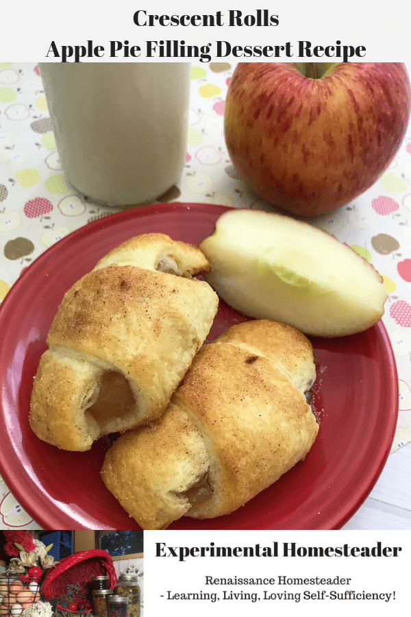 Crescent rolls apple pie laying on a plate with a sliced apple quarter, a whole apple and a glass of milk in the background.