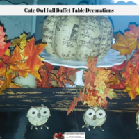 Cute Owl Fall Buffet Table Decorations