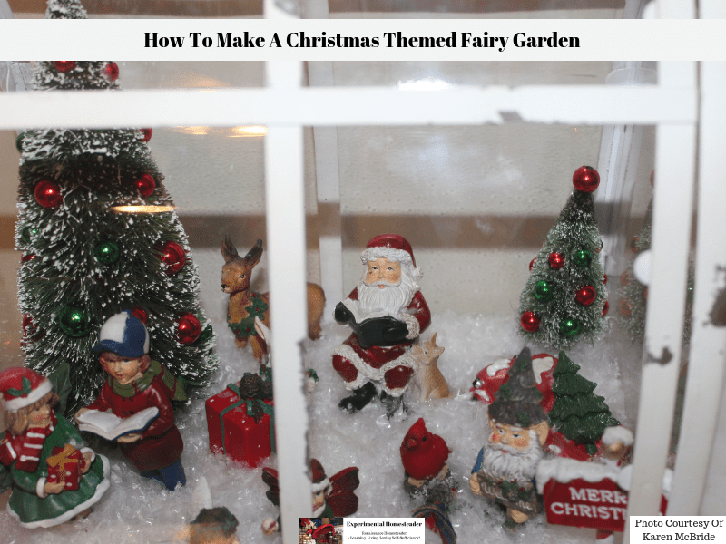 A closeup view of the inside of the Christmas themed fairy garden.