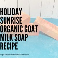 Holiday Sunrise Organic Goat Milk Soap Recipe