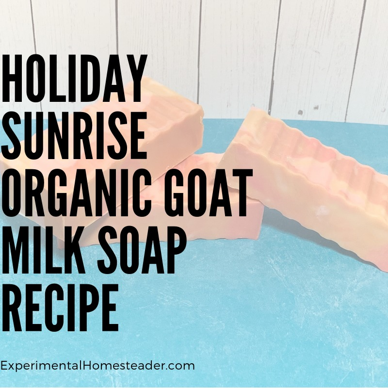 The Holiday Sunrise Organic Goat Milk Soap cure and ready for use.
