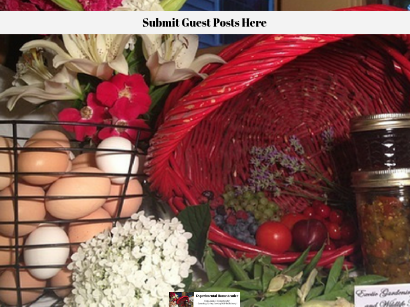 Submit Guest Posts Here - Experimental Homesteader