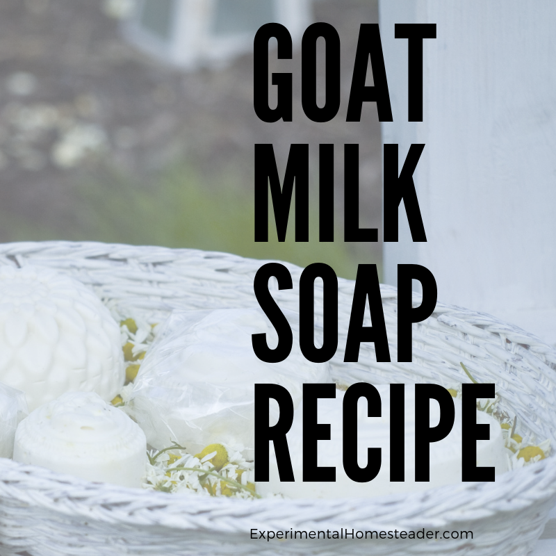 Bars of molded goat milk soap in a white basket.