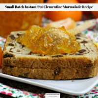 Small Batch Instant Pot Clementine Marmalade Recipe