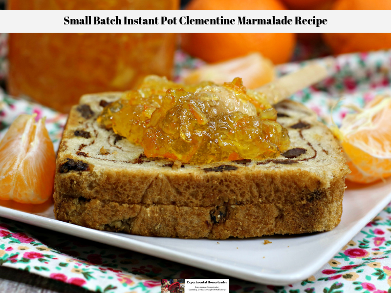 The Clementine Marmalade Recipe spread on a piece of cinnamon raisin bread.