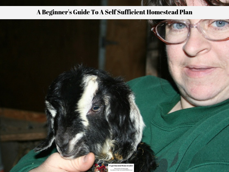 Sheri Ann Richerson holding one of the baby goats born here at the farm.